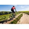 Vélo Gravel électrique Moustache Dimanche 29.3 2020 vue arrière