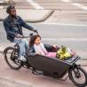 Vélo cargo électrique Urban Arrow Family