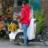 Triporteur électrique Babboe Pro Trike XL